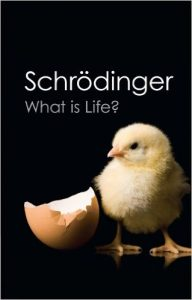 schrodinger what is life